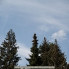 20120417-121539-jla_5360