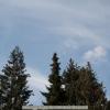 20120417-121543-jla_5362