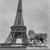 2012-07-Paris-France-Scan-6x6-13