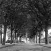 2012-07-Paris-France-Scan-6x6-24