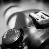 Canon Spardose 07