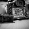 Canon Spardose 08