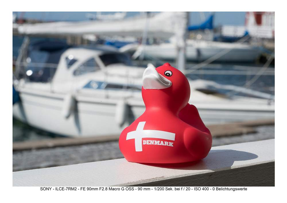 2015-08-Enten-Blendenreihe-18