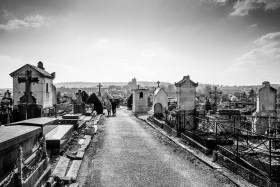 20160313-150026-Sezanne-Friedhof-Leicakuh