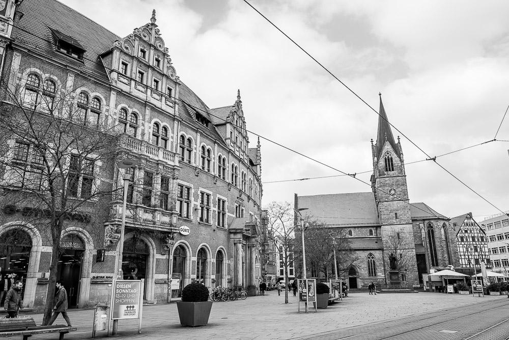 20160316-124505-Erfurt-Leicakuh