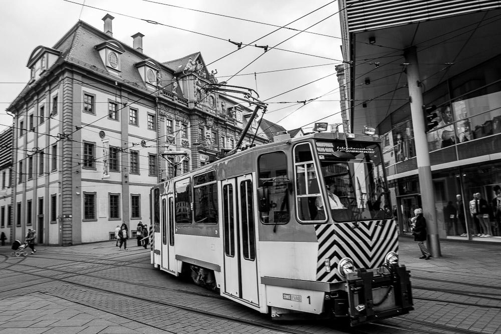 20160316-124717-Erfurt-Leicakuh