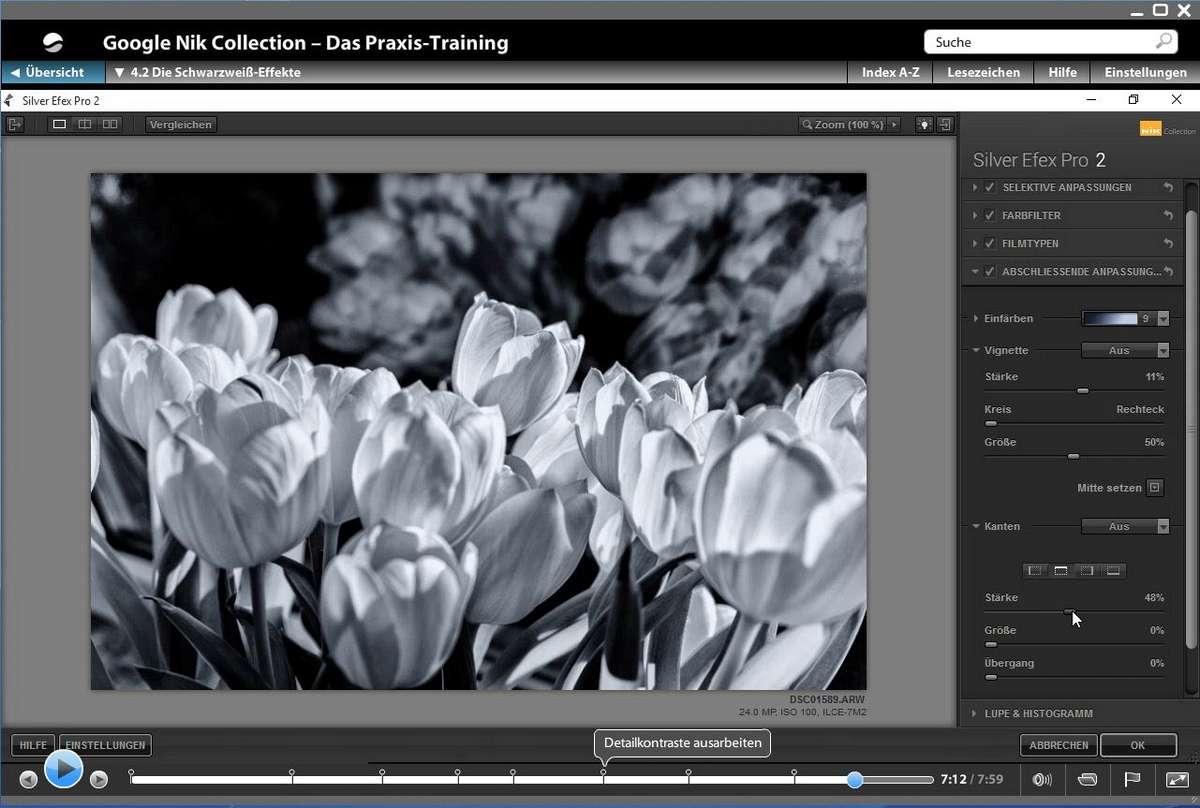 2016-07-31-VideoTraining-Nik-14