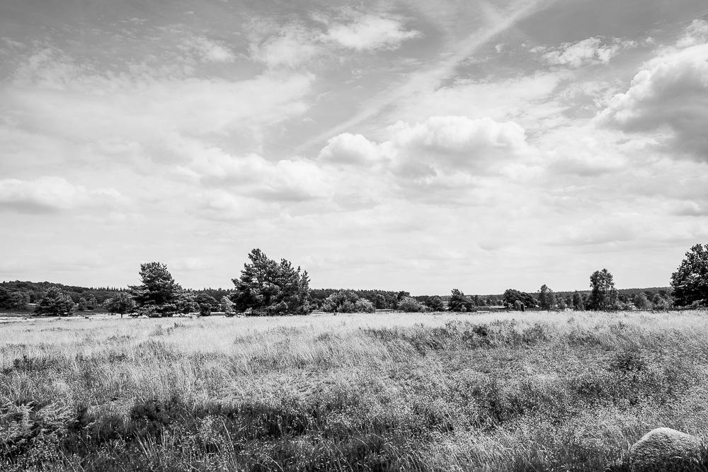 20160710-014-Roadtrip-Nord-Deutschland
