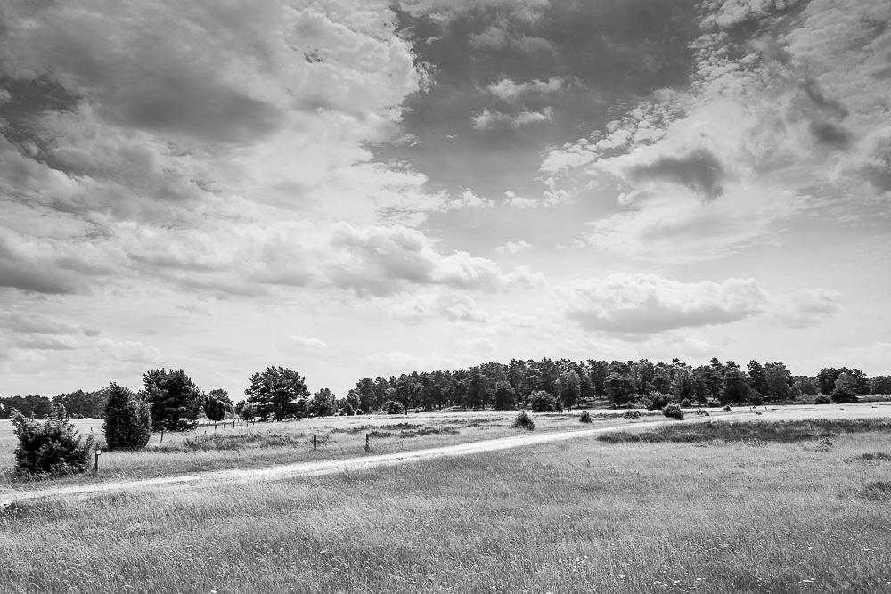 20160710-021-Roadtrip-Nord-Deutschland