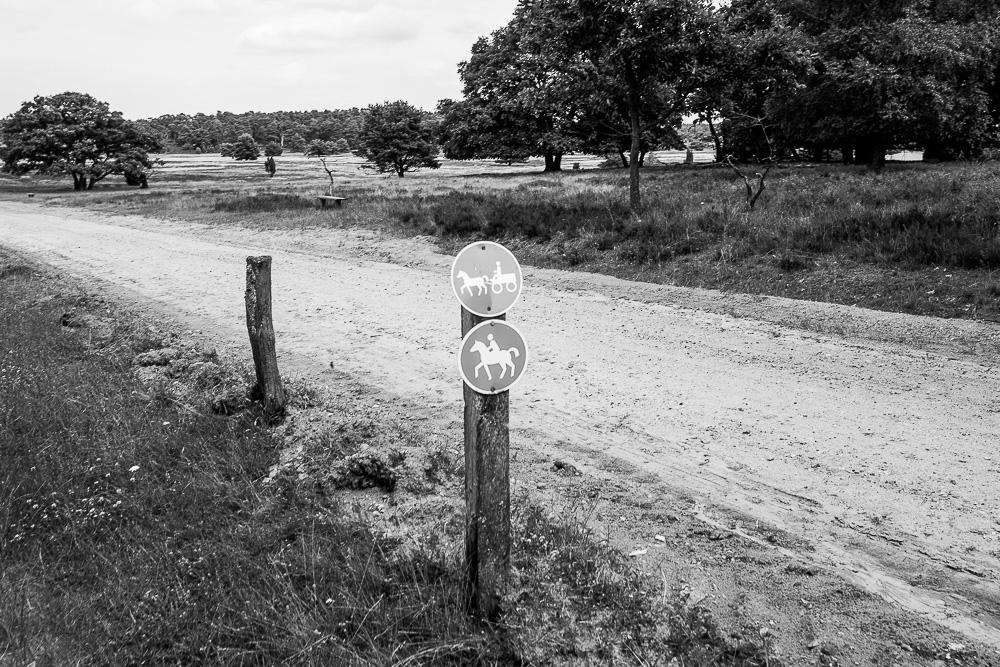 20160710-025-Roadtrip-Nord-Deutschland