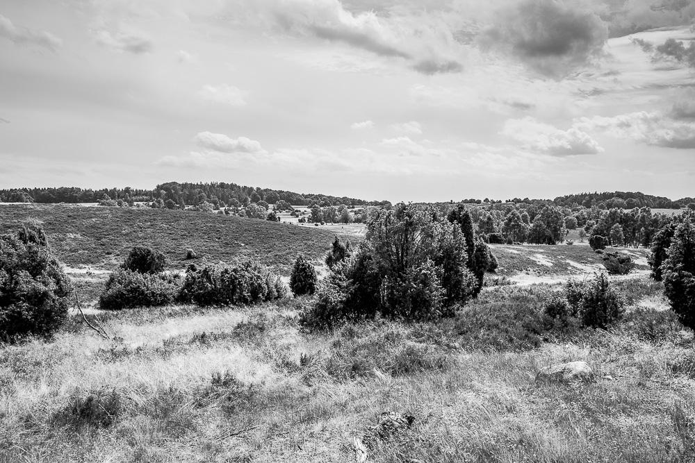 20160710-032-Roadtrip-Nord-Deutschland