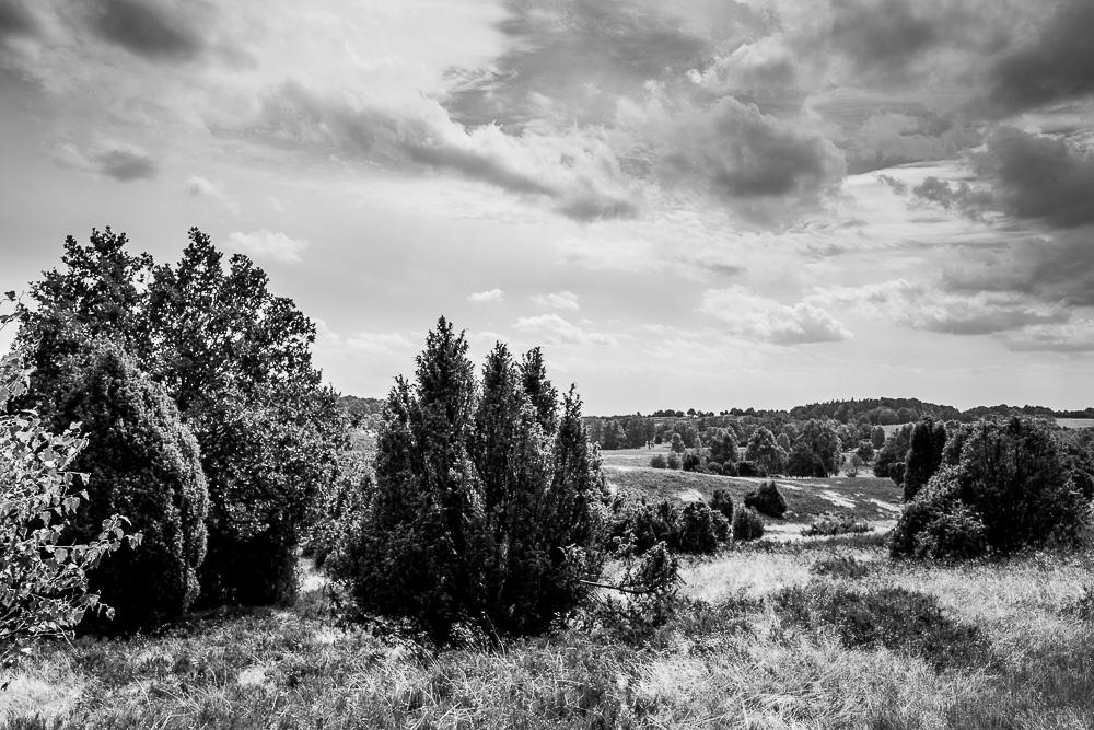 20160710-033-Roadtrip-Nord-Deutschland