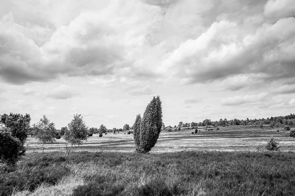20160710-035-Roadtrip-Nord-Deutschland