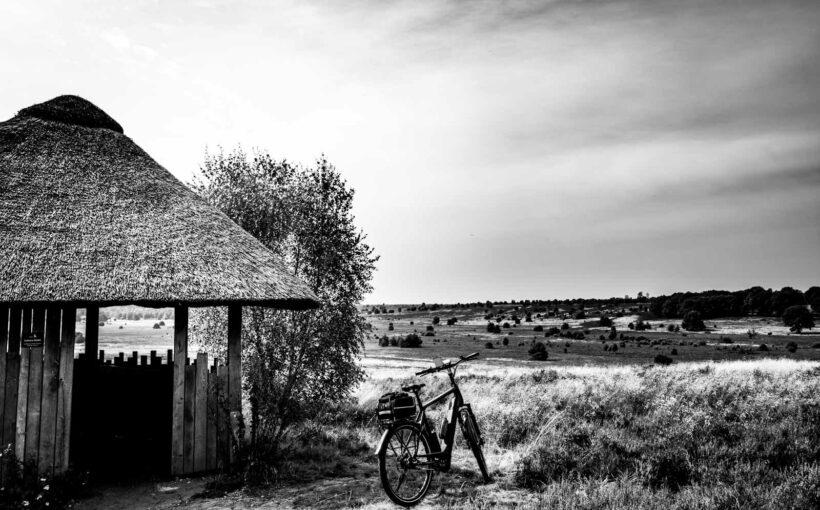 #WeeklyBoys - 32 - Lüneburger Heide